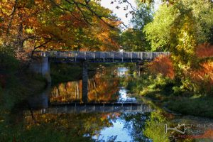 Lancaster NY Photographs prints Como Park Islands